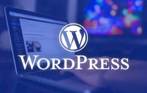 help with your WordPress Website
